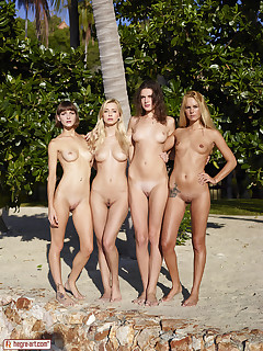 Wild pussy beach party